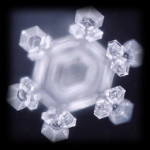 Cristal Emoto.png